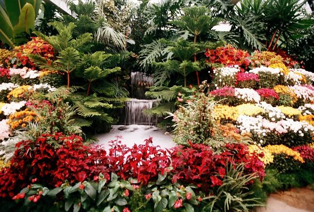 「布查德花園(Butchart Gardens)」的圖片搜尋結果