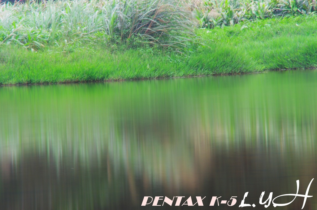 簡單的翠湖一遊