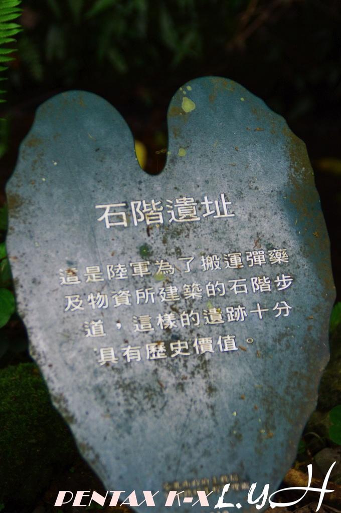 遺落的富陽公園