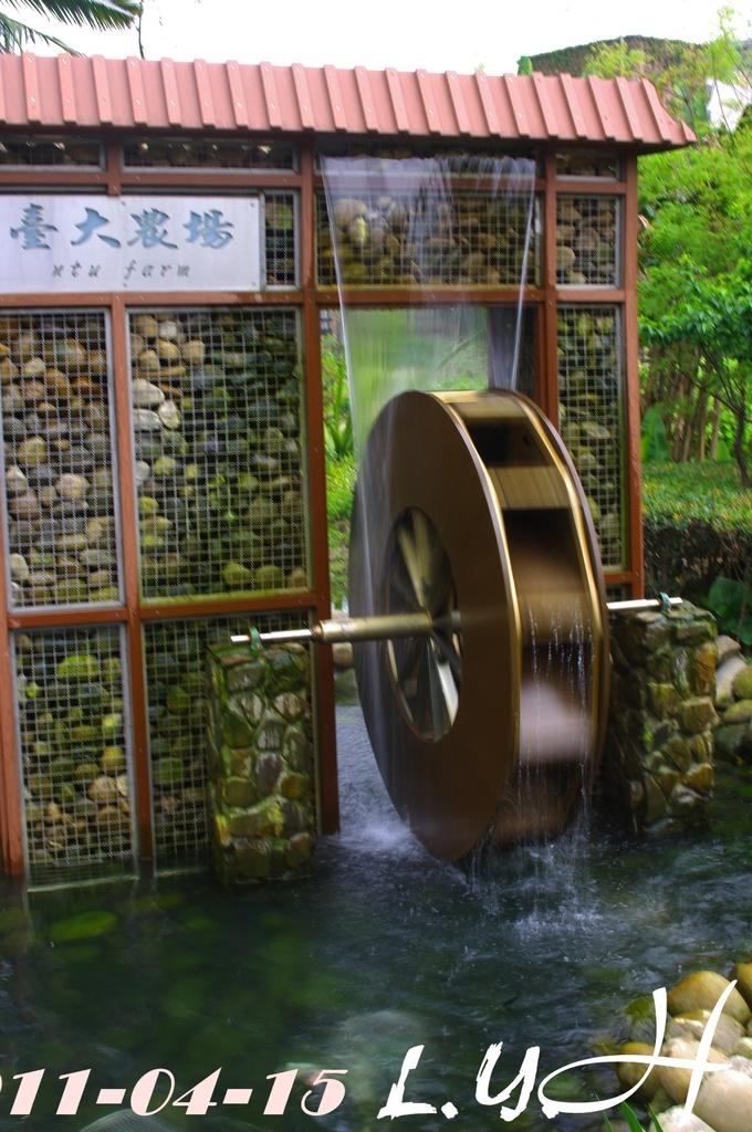 台灣大學和寶藏巖