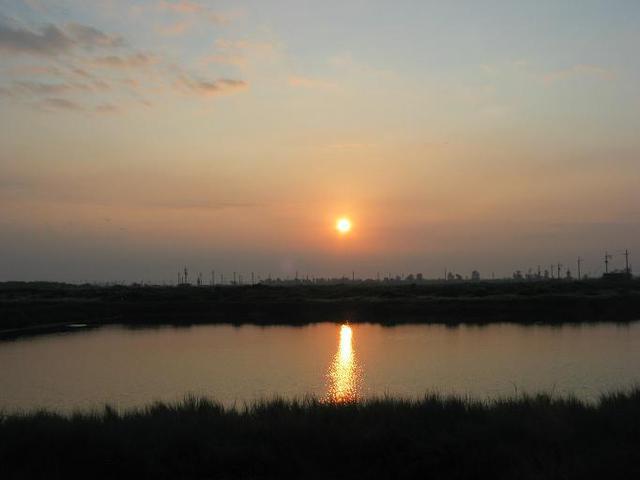 3七股的朝陽從魚塭間升起.J