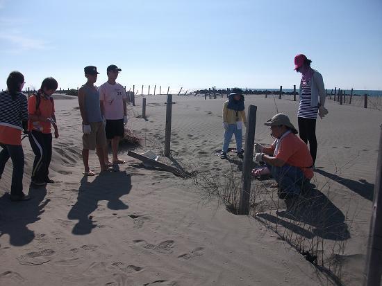 DSCF6804佳琪為我們示範一段需要重新補強編籬的竹柵的.JPG