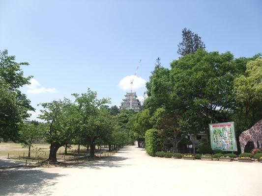 兵庫姬路城景點-日本姬路市立動物園ZOO(姬路動物園)‧平日休閒活動的好夥伴