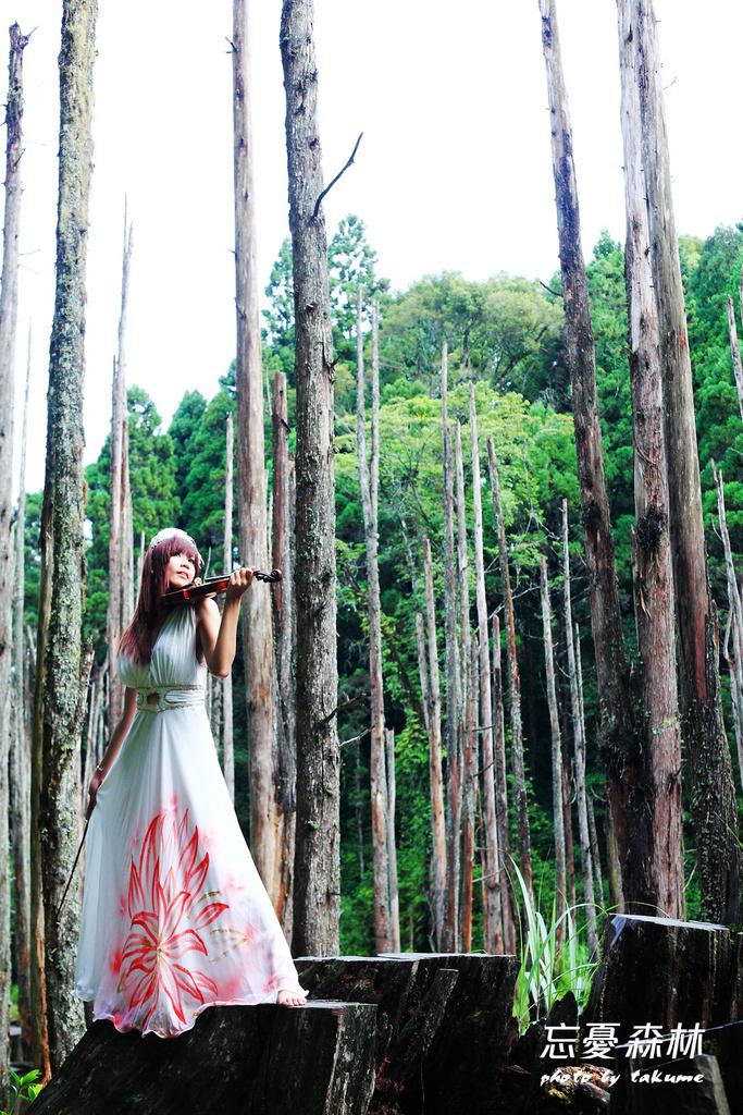 忘憂森林-梅子