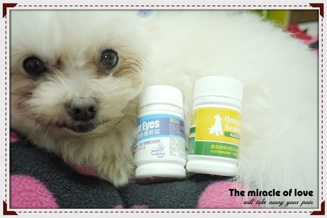 狗狗與狗狗保健營養食品-專利護眼錠和黃金海寶油