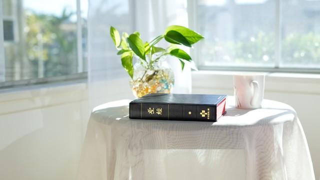 關於聖經的真理問答